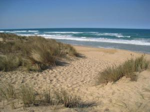 Seaspray - the 90 mile beach, Victoria, Australia