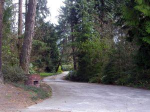 rural-driveway-113490-m